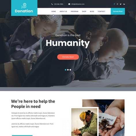 Donation-WordPress-theme-new