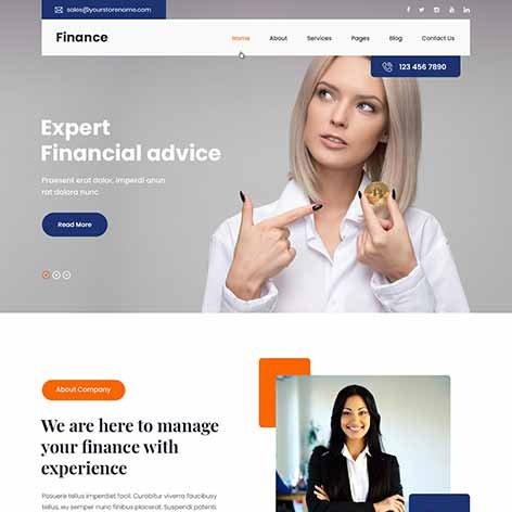 Finance-WordPress-theme