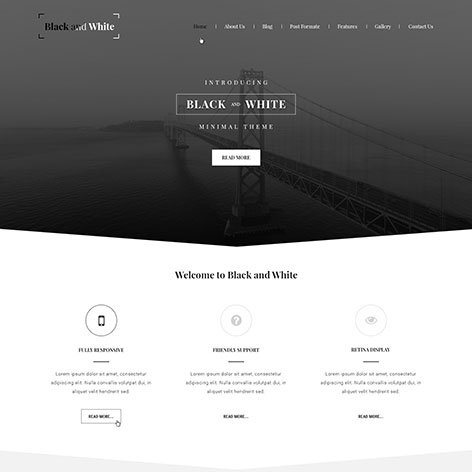 black-white-wordpress-theme1