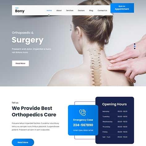 chiropractor-WordPress-theme