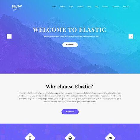 customizable-wordpress-theme1
