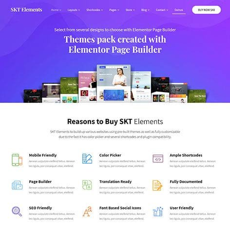 elementor-wordpress-theme