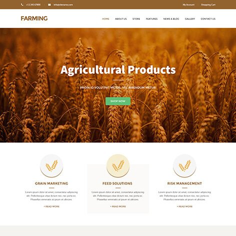 organic-food-wordpress-theme1