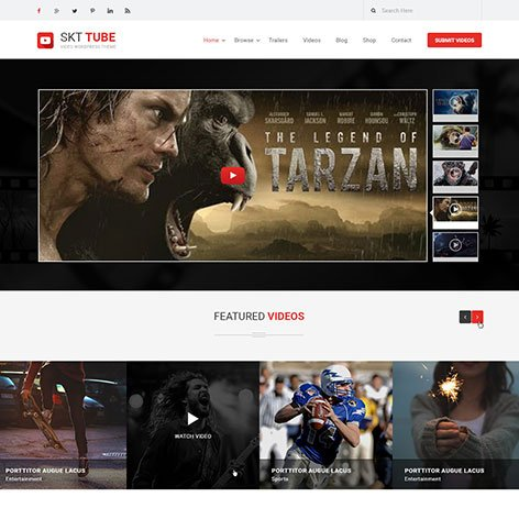 video-wordpress-theme1